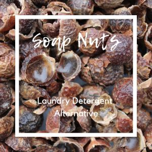 Soap Nuts - Laundry Detergent Alternative (Review)