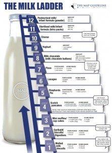12 step milk ladder